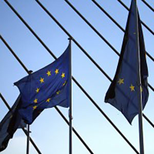 EU Parliament Votes on 2030 Renewable-Energy Targets