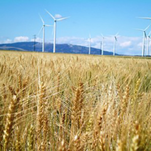 Majority of Europeans Recognize Importance of 'Green Economy'