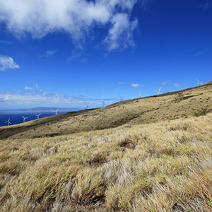 Hawaii Proposes 100 Percent Renewable Energy by 2045