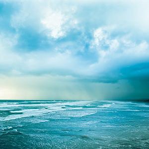 Swim, Drink, Power; The Ocean