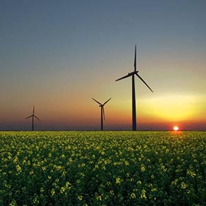 SunEdison may soon buy Continuum Wind Energy, making it India's biggest clean energy buy