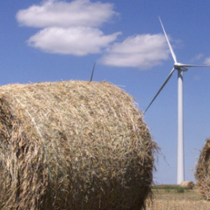Global shift towards clean energy is picking up steam: report