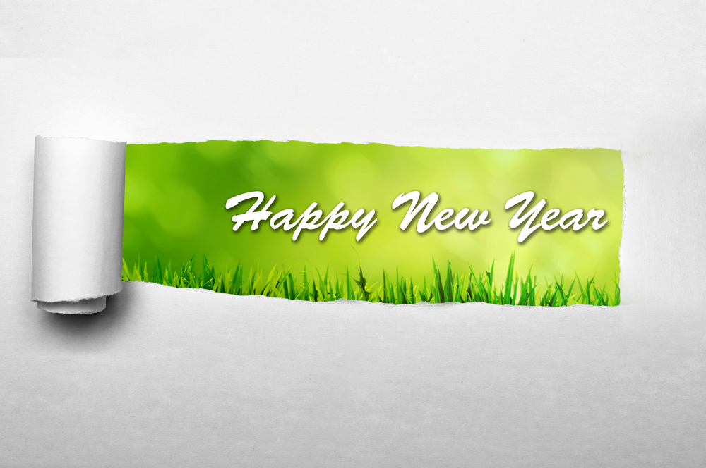 happy new year on grass