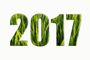 2017 grass background